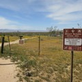 Welcome to Desert Tortoise Research Natural Area.- Desert Tortoise Natural Area