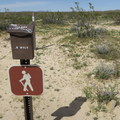 There are a couple of short hiking loops at Desert Tortoise Research Natural Area.- Desert Tortoise Natural Area
