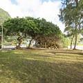 Kalae'O'iO Beach Park.- Kalae'O'iO Beach Park