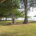 Grassy beach park.- Kalae'O'iO Beach Park