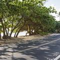 Kalae'O'iO Beach Park is located along Kam Highway between Kualoa and Ka'a'awa.- Kalae'O'iO Beach Park