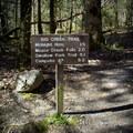 Big Creek Trail.- Big Creek Trail to Mouse Creek Falls