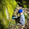 Getting a closer look at nature! - Big Creek Trail to Mouse Creek Falls
