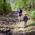 Taking a hike down the Big Creek Trail. - Big Creek Trail to Mouse Creek Falls