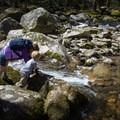 Learning the ways of the river.- Big Creek Trail to Mouse Creek Falls