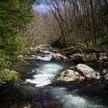 Big Creek.- Big Creek Trail to Mouse Creek Falls