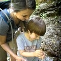 Connecting to nature in Great Smoky Mountains National Park. - Little River Trail