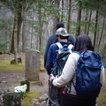 Exploring the Ownby Cemetery.- Porters Creek Trail to Fern Branch Falls