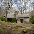 Historic Farm Site along the Porters Creek Trail.- Porters Creek Trail to Fern Branch Falls