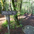 Abrams Falls Trailhead is located midway into the Cades Cove Loop. - Abrams Falls Trail