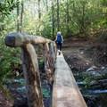 A footbridge on the way to Abrams Falls. - Abrams Falls Trail