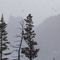 The peaks barely visible through the snow.- Emerald Lake Backcountry Tour