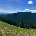 The panoramic view facing southeast from the first meadow clearing of the trail.- Crescent Mountain