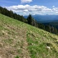 A meadow toward the top of the trail.- Crescent Mountain