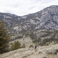 Return along the same route.- Coyote Creek Trail