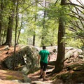 The trail has plenty of variation to keep it interesting.- Stone Valley Recreation Area