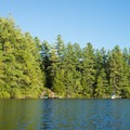 The lake is lined with trees.- Francis Lake
