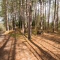 One of a handful of campsites near the picnic area.- Greenwood Creek Picnic Area