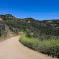The Mulholland Trail - Hollywood Sign via Canyon Drive
