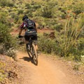 Most of the trails are multi-use.- Cave Creek Regional Park