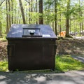 While camping in Cades Cove, be certain to store food properly and dispose of trash in the proper trash cans. After all, you are in bear country.- Cades Cove Campground