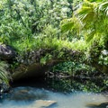 The many bridges feature old stonework that can be easily seen when the water levels are low.- Kamananui Valley Road