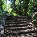 The stairs to an old jungle estate.- Kamananui Valley Road