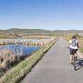 Great birdwatching in the wetlands on this end of the trail and many other sections.- The Rail Trail