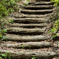 Stairs to Bearwallow Mountain.- Bearwallow Mountain