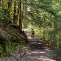 Mountain biking in El Corte de Madera Creek Preserve.- El Corte de Madera Creek Preserve