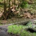 A bridge crossing in the preserve.- El Corte de Madera Creek Preserve