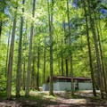 Hidden underneath a canopy of trees and tucked away in a quiet corner of the Smokies, Cosby is the perfect location for a family getaway. - Cosby Campground
