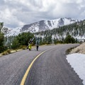 Hiking the closed road.- Wheeler Peak