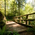One of several bridge crossings along the South Willamette Trail.- South Willamette Trail Hike