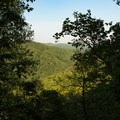 Views through the forest on the trail to Little Bearwallow Mountain.- Little Bearwallow Mountain