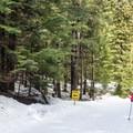Family cross-country ski day at Lost Lake Park.- Lost Lake Park