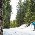 Cross-country skiing at Lost Lake.- Lost Lake Park