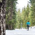 A cross-country skier at Lost Lake.- Lost Lake Park