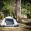 Campsites in Cades Cove offer solitude while also giving you the security of being close to others. Waves to your neighbor and a chat as you pass by can make the campground itself feel like a community. - Cades Cove Campground