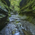 Bear Hollow.- Rocky Hollow Falls Canyon Nature Preserve: Trail 3
