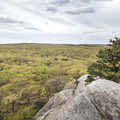Lookout from the summit of the Hill of Pines.- Black Rock Forest