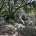 An oak-shaded canyon surrounding the waterfall.- Reservoir Canyon Falls