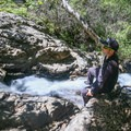 Sitting on an oak above the top of the falls.- Reservoir Canyon Falls