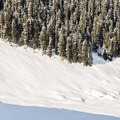 Snowboarding on Mount Joffre.- Mount Joffre via Cerise Creek