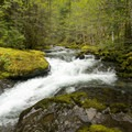 A waterfall nearby Blue Hole Falls and Evergreen Falls.- Evergreen Falls + Blue Hole Falls