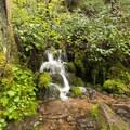 Smaller cascades are many along the trail to Pinard Falls.- Pinard Falls