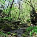 Stephens Falls Trail.- Governor Dodge State Park
