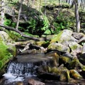 Fun streams to play in.- Governor Dodge State Park