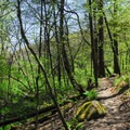 Well-maintained trails.- Governor Dodge State Park