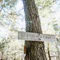 The loop through the White Mountain National Forest is well marked.- Boulder Loop Trail